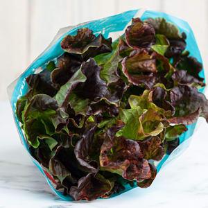 Lettuce, Bright & Juicy Red- Code#: PR217170NCN