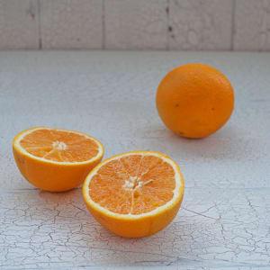 Organic Oranges, Satsuma- Code#: PR100578NPO