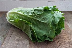 Local Organic Lettuce, Romaine- Code#: PR100152LCO