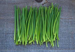 Organic Herbs, Chives- Code#: PR167649NCO