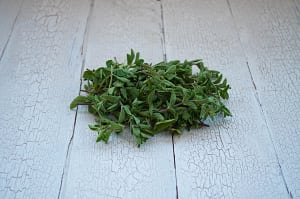Organic Herbs, Oregano- Code#: PR166616NCO