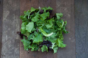 Organic Lettuce, Spring Mix - Large- Code#: PR210168NCO