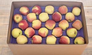 Local Organic Apples, Ambrosia - CASE- Code#: PR217053LCO