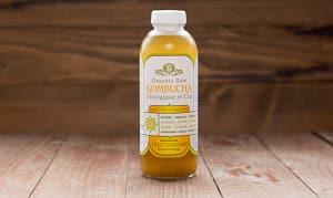 Organic Citrus Kombucha- Code#: DR111