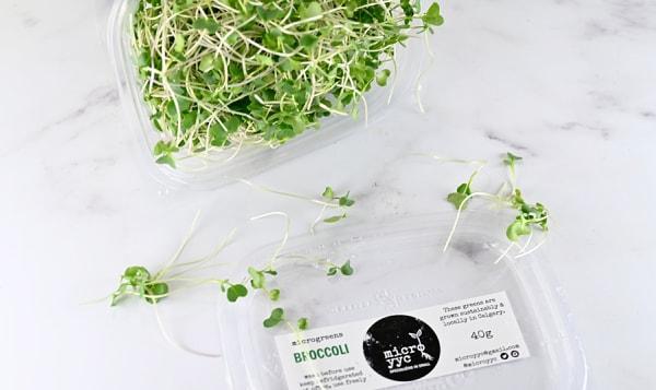 Local Microgreens, Broccoli - Compostable materials