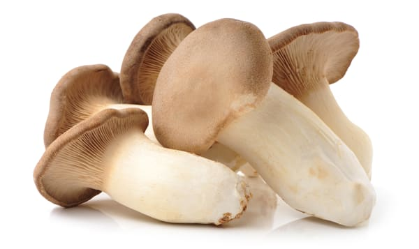 Organic Mushrooms, King Oyster