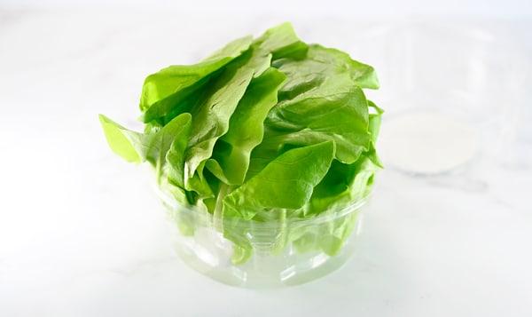 Local Lettuce, Butter - Alberta