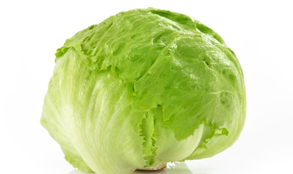 Organic Lettuce, Iceberg