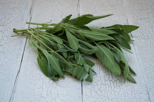 Local Organic Herbs, Sage
