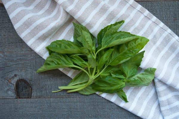 Local Herbs, Thai Basil