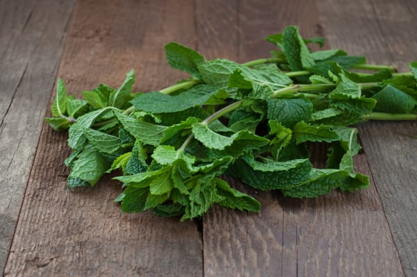 Local Organic Herbs, Mint