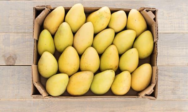 Organic Mangos, Ataulfo - CASE