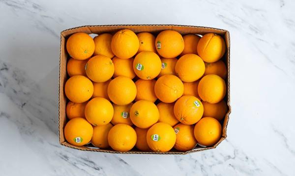 Organic Oranges, Navel - Case