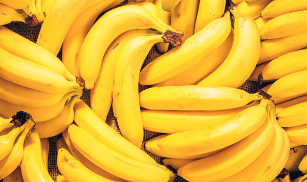 Organic Bananas, Case