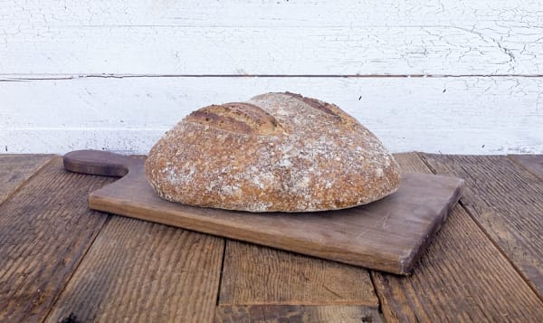 Organic Sourdough with Whole Wheat