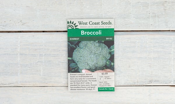 Everest  Broccoli Seeds