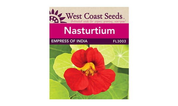 Empress of India  Nasturtium Seeds