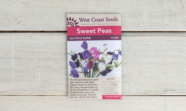 Old Spice Blend  Sweet Pea Seeds