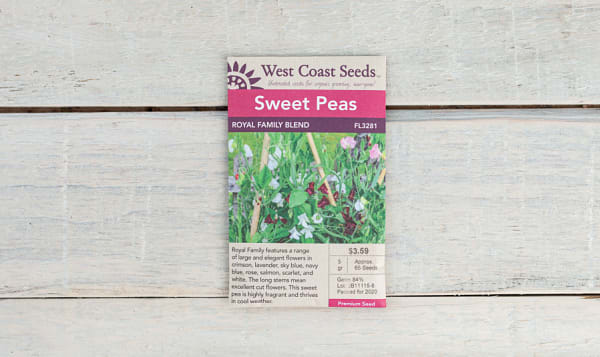 Royal Family  Flower Seed Blend