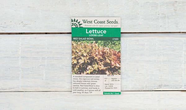Red Salad Bowl  Lettuce Seeds (OP)