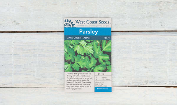 Dark Green  Italian  Parsley Seeds