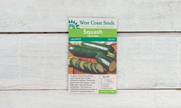 Jackpot  Zucchini Seeds