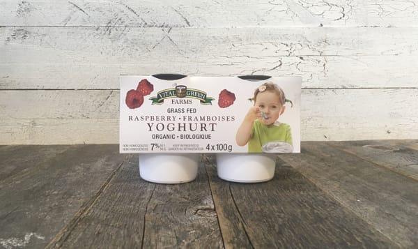 Organic Grass-Fed 7% Yogurt - Raspberry