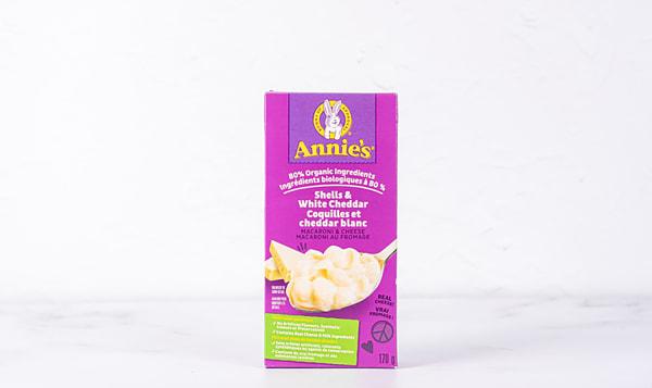 Pasta Shells & White Cheddar