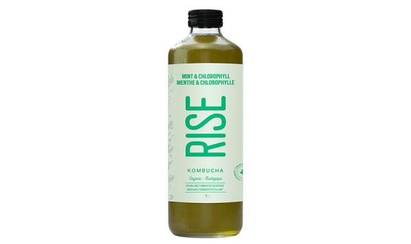 Organic Mint Chlorophyll Kombucha
