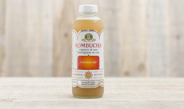 Organic Gingerade Kombucha