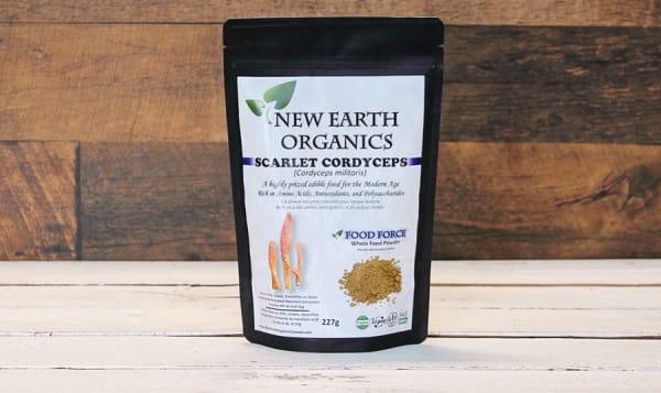 Organic Activation Extracted Scarlet Cordyceps Mushroom