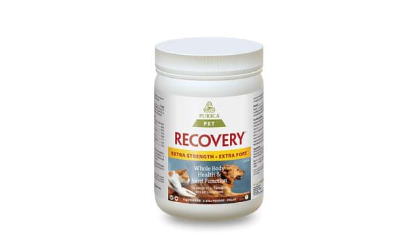 Organic Pet Recovery Extra Strength Powder