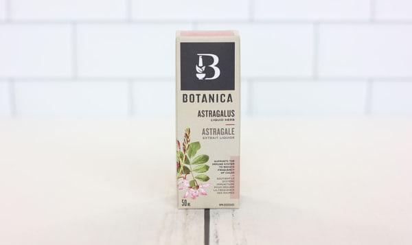 Astragalus Liquid Herb - Anti-Viral, Immune System Adaptogen